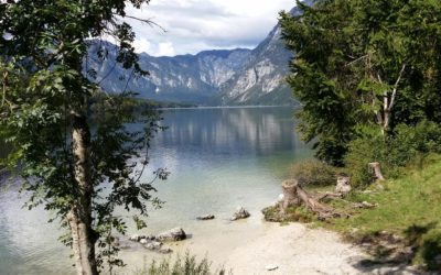 ADA Convention, Bohinj, Januar 19 to January 21, 2018